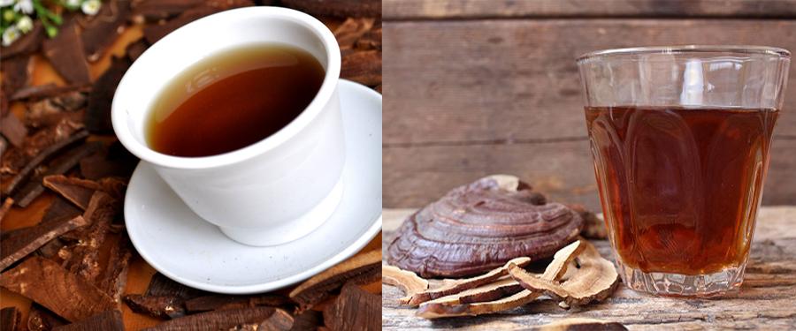 Cách dùng nấm lim xanh trị bệnh gan là sắc nước uống