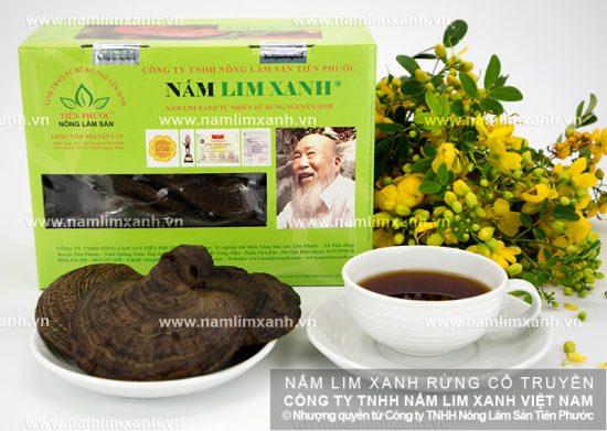 Cách dùng nấm lim xanh Quảng Nam