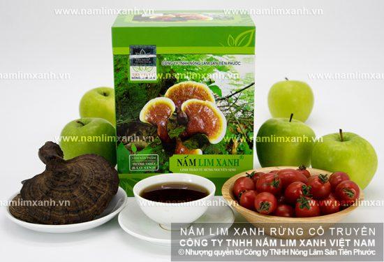 Công dụng nấm lim xanh Quảng Nam với sức khỏe
