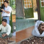 Công ty nấm lim xanh Nguyễn Đình Hoa bán nấm không rõ nguồn gốc?