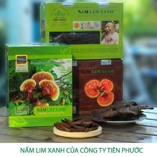 Hình ảnh sản phẩm nấm lim xanh của Công ty Tiên Phước