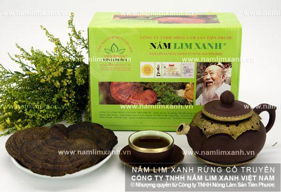 Hình ảnh nấm lim xanh rừng thật chính hãng Quảng Nam