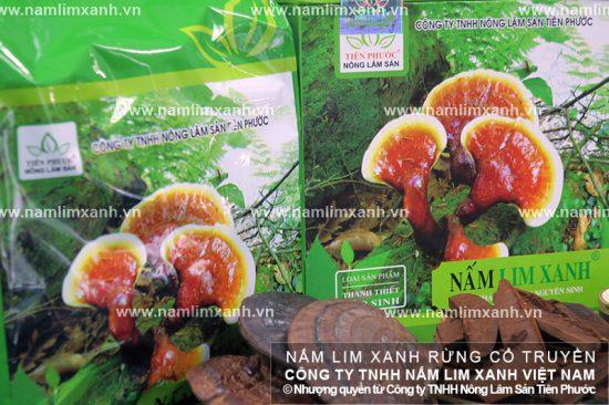 Mua nấm lim xanh ở đâu tại Hà Nội