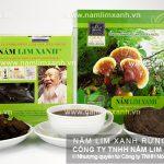 Nấm lim xanh chữa bệnh viêm gan - Cách uống nấm lim rừng khoa học