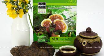 Tác dụng nấm lim xanh Quảng Nam với cách dùng nấm lim tự nhiên