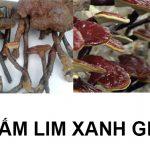 Tác hại của nấm lim giả, hướng dẫn chọn mua nấm lim xanh rừng