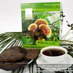 Tìm hiểu về nấm lim xanh - Công dụng chữa bệnh nấm lim xanh rừng